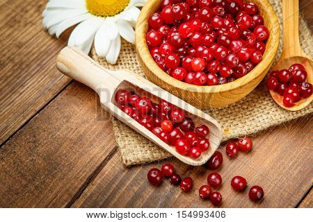 Studio shot of fresh natural redcurrant on wooden background