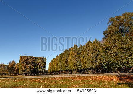 Beautiful  landscape -  Urban  autumn  landscape in Ventspils,Latvia