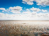 Mud flat at low tide. North sea landscape with cloud sky. Nature reserve and travel destination in Germany poster