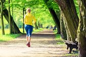 Woman running and walking in beautiful city park. Young girl jogging in bright forest outdoors summer nature. Endurance concept with working out and exercising in inspirational green woods landscape. poster