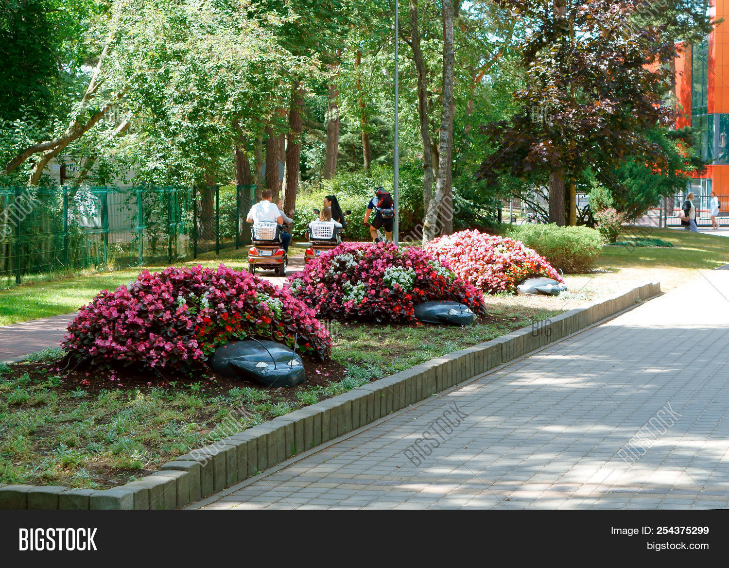 Beautiful Flower Beds Image Photo Free Trial Bigstock