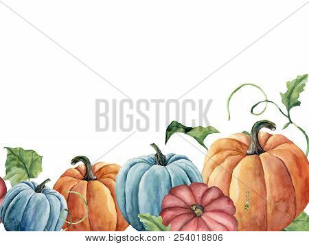 Watercolor Bright Pumpkin And Leaves Card. Hand Painted Autumn Pumpkin Ornament With Branch Isolated