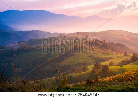 Purple Sunrise In Foggy Countryside. Distant Mountains In Blue Shade. Fantastic Autumn Mood.
