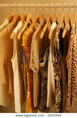 Beige, Gold And Brown Blouses And Shirts