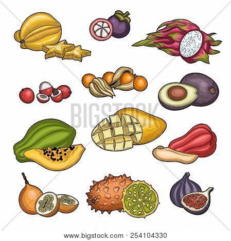 Fruits. Tropical Fruit. Carambola, Litchi, Granadilla, Winter Cherry, Figs, Java Apple, Mangosteen,