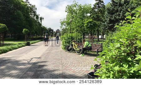 Pretty Girl Cyclist Bicycle Using Smartphone Park Sunny Day Cute City Parks Active Young Woman Cycli