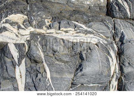 White Veins Of Calcite In Fissured Dark Gray Mudstone, Close-up.