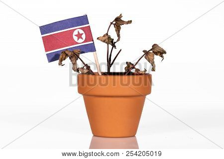 flag of north korea in a flowerpot with drought flower, conceptpeanlties or punitive tariff or bad purchasing power. symbol for a bad economy of a country poster