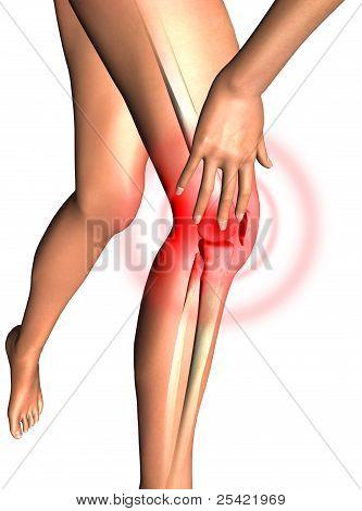Leg, Health 3D Render