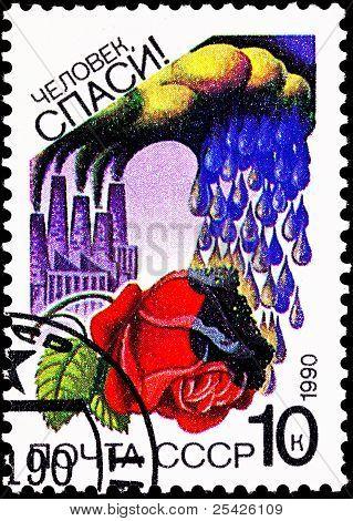 Environmental Air Pollution Acid Rain Rose