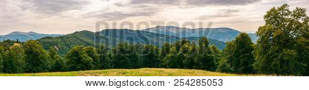 Gorgeous Mountain Panorama In Summer Afternoon. Primeval Beech Forest Around Alpine Meadow. Distant