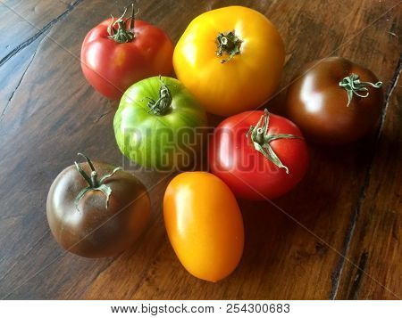 Seven Different Tomatoes: Colorful Tomatos In Green, Yellow And Shades Of Red