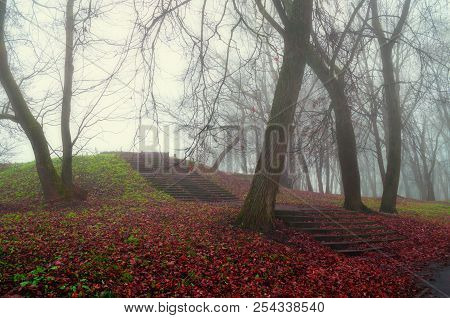 Autumn landscape. Foggy autumn park alley with bare trees and dry fallen autumn leaves covering the old stone stairs. Autumn landscape scene - lonely autumn park  in autumn foggy weather. Autumn gothic landscape view. Deserted autumn park in autumn fog