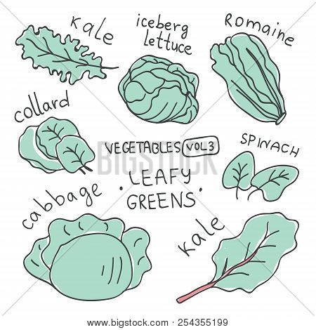 Set With Hand Drawn Colorful Doodle Vegetables. Vegetables Flat Icons Set Of Leafy Greens : Kale, Ic
