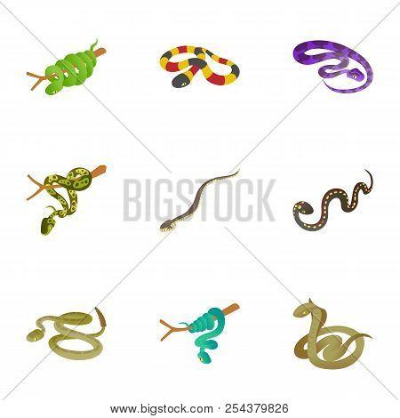 Rattlesnake Icons Set. Cartoon Set Of 9 Rattlesnake Vector Icons For Web Isolated On White Backgroun