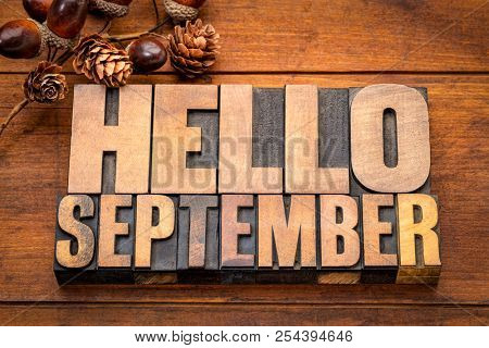 Hello September - word abstract in vintage letterpress wood type blocks against grunge wooden background with a fall decoration