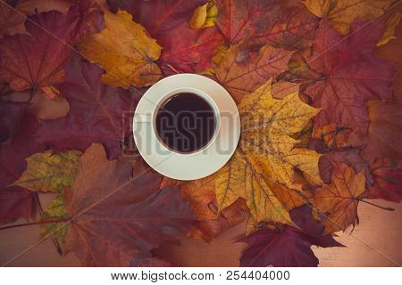 Autumn Maple Leaves And Cup Of Coffee. Seasonal, Morning Coffee, Sunday Relax Concept. Place For Tex