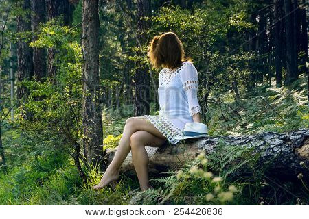 Beautiful Girl In The Forest. Young Beautiful Girl Sitting In The Forest On The Tree Trunk. Beautifu
