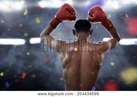 Muscular Boxer Athlete Winning The Championship Match