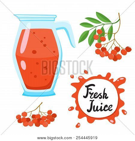 Juice With Ashberry In A Glass Jug, Vector Cartoon Car