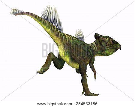 Archaeoceratops Dinosaur Tail 3d Illustration - Archaeoceratops Was A Ceratopsian Herbivorous Dinosa