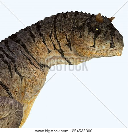 Carnotaurus Sastrei Dinosaur Head 3d Illustration - Carnotaurus Was A Carnivorous Theropod Dinosaur