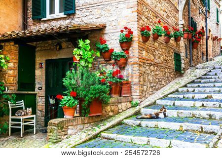 Charming flora decorated streets of old Italian villages. Casperia in Rieti province. Lazio, Italy