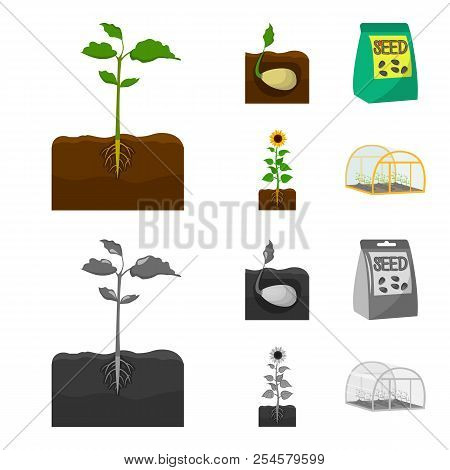 Company, Ecology, And Other Web Icon In Cartoon, Monochrome Style. Husks, Fines, Garden Icons In Set