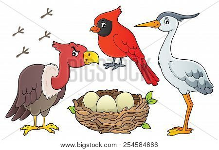 Birds Topic Collection 1 - Eps10 Vector Picture Illustration.