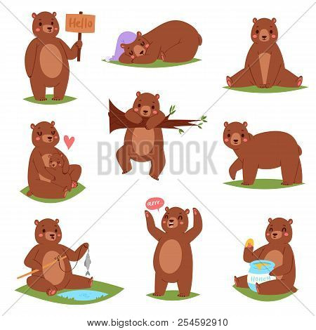 Bear Vector Set Cartoon Animal Character And Cute Brown Grizzly Eating Honey Illustration Animalisti