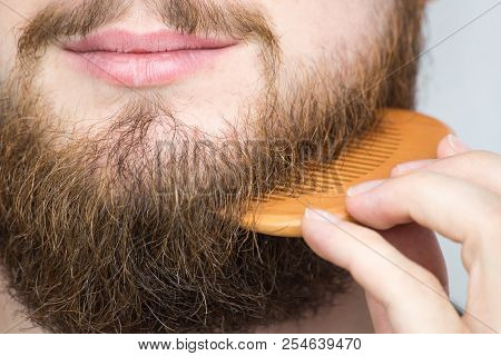 Closeup Of A Young Man Styling His Long Beard With A Comb While Standing Alone In A Studio Against A