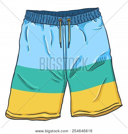 Vector Single Cartoon Illustration - Beach Colorful Swimming Shorts
