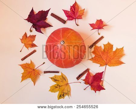 Orange Pumpkin, Cinnamon And Colorful Autumn Maple Leaves. Fall Concept.
