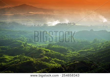 Hills covered in coffee and banana plantations near Buenavista, Antioquia, Colombia