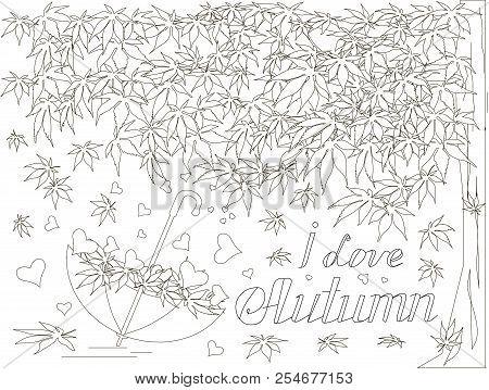 Maple Tree, Falling Maple Leaves Sketch, Umbrella Monochrome Romantic Background Lettering I Love Au