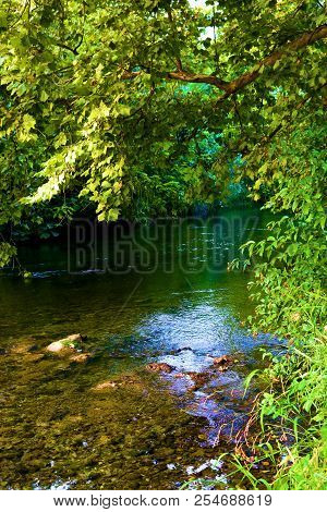 Lush Deciduous Tree And Plants Surrounding A Creek Which Is A Popular Fishing Spot Taken At A Ripari
