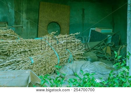 Bales of dried stalks along with other discarded items inside abandoned building. poster