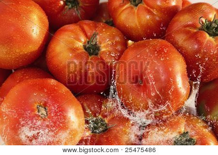 Composition with tomatoes