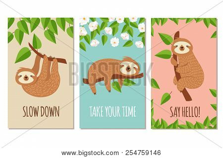 Lazy Sloth. Cute Slumbering Sloths On Branch. Child T Shirt Design Or Greeting Cards Vector Set. Ill