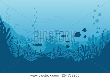 Sea Underwater Background. Ocean Bottom With Seaweeds. Vector Marine Scene. Ocean Scene, Sea Underwa