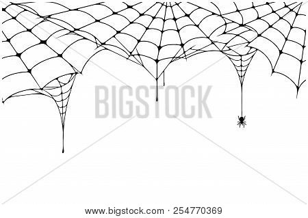 Scary Spider Web Background. Cobweb Background With Spider. Spooky Spider Web For Halloween Decorati