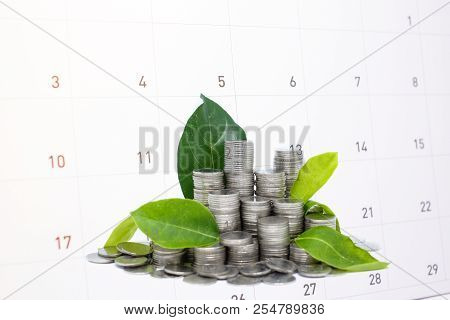 Saving (frugal) Money In Glass For Your Investment Future Is Similar To Growing Green Leaves On Tree
