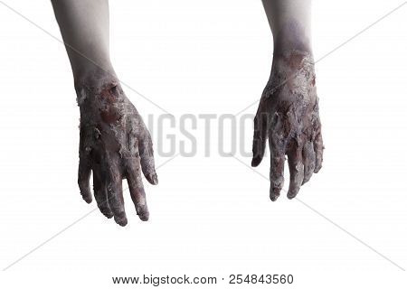 Terrible Zombie Hands, Dirty Hands Of The Mummy, Zombie Theme, Halloween Theme, White Background, Is