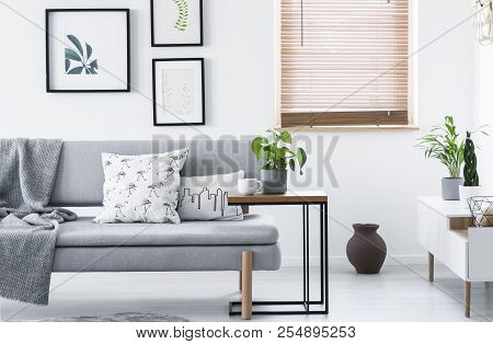 Real Photo Of End Table With Fresh Plant And Tea Cup Standing By Grey Couch With Cushions And Blanke