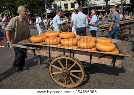 Alkmaar, Netherlands - July 20, 2018: Man pushing a traditional wooden cart loaded with cheese wheels after beiing sold at the cheese market in Alkmaar