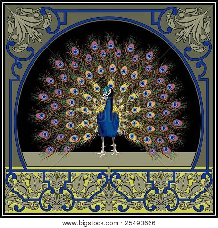 Vector vintage frame with peacock
