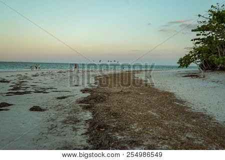 Sandy Beach At Sunset On Sanibel Island In Florida