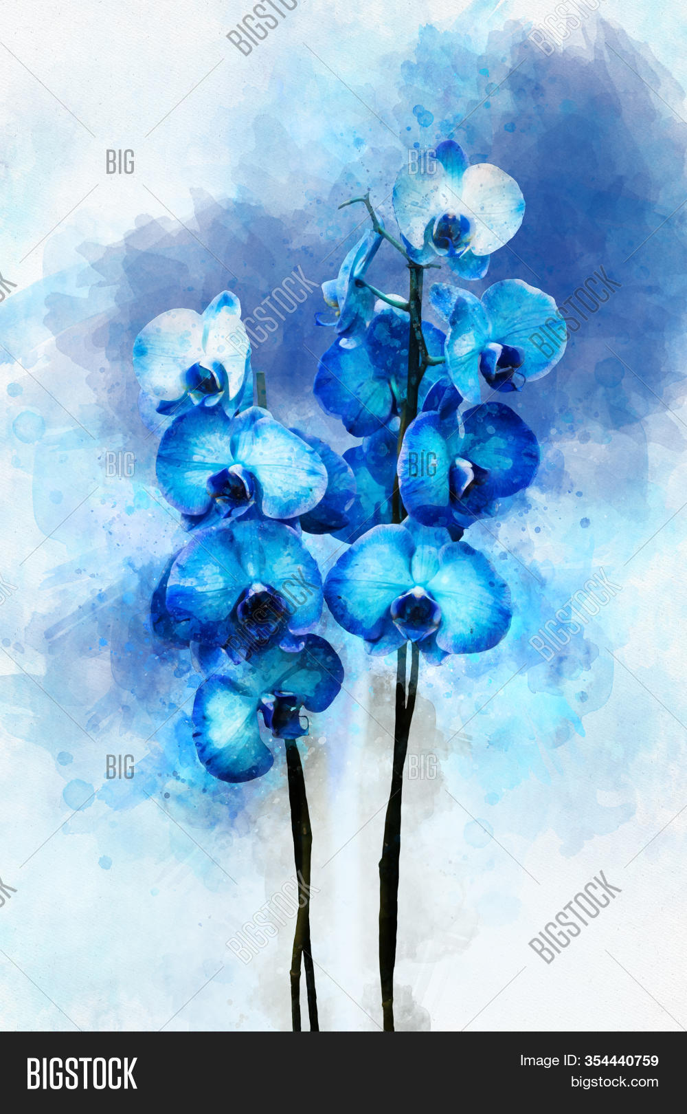 Tropical Blue Orchid Image Photo Free Trial Bigstock