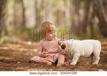Cute Little Baby Girl With An English Bulldog Puppy Playing. Concept: Relationships, Happiness, Fami