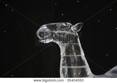 Ice Camel